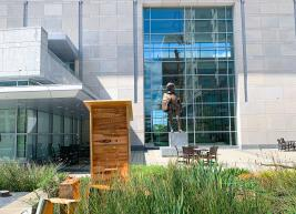 The new bee hive sits in the garden at the Raleigh Convention Center with the Sir Walter Raleigh statue in the background