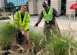 Team members from our venue work to plant flowers and native grasses in our new garden